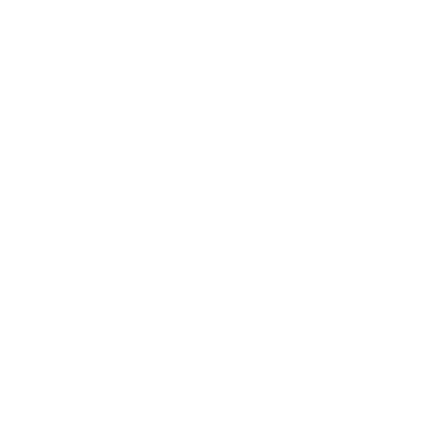 faconari png calzedonia group through some of the company s most important milestones its history international growth key players and professional opportunities